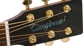 Tanglewood In-Store at Musicroom Portsmouth – Saturday 26th March