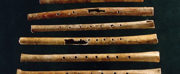 Oldest known musical instrument discovered