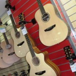 Faith Guitars (3)